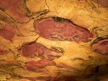 Os desenhos do teto de Altamira cavam em Santillana Del Mar, Cantábria, Espanha foto de stock