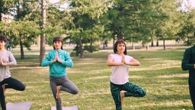 Os desportistas atrativos estão equilibrando em um pé durante a força tornando-se e o equilíbrio da classe exterior da ioga Parqu filme
