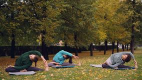 Os desportistas bonitos estão fazendo esticando os exercícios que sentam-se em esteiras da ioga no parque da cidade no fim de sem video estoque