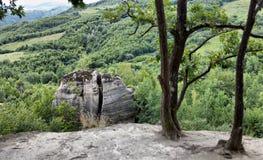 Os detalhes da cume perto de um lugar maravilhoso dos dragões jardinam, a Transilvânia, Romênia imagens de stock royalty free