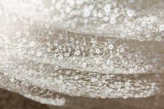 Os detalhes da noiva vestem a tela e o weddi bonito do bordado Fotografia de Stock Royalty Free