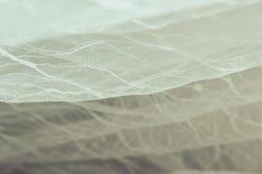Os detalhes da noiva vestem a tela e o weddi bonito do bordado Foto de Stock