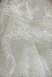 Os detalhes da noiva vestem a tela e o weddi bonito do bordado Imagem de Stock