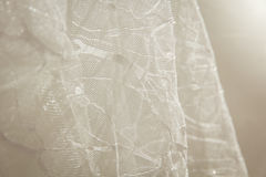Os detalhes da noiva vestem a tela e o weddi bonito do bordado Fotos de Stock
