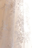 Os detalhes da noiva vestem a tela e o weddi bonito do bordado Fotografia de Stock