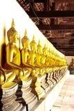 Os discípulo da Buda Imagens de Stock Royalty Free