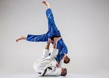 Os dois lutadores dos judokas que lutam homens Foto de Stock Royalty Free