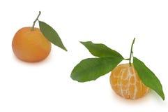 Os dois mandarino no fundo branco Fotografia de Stock Royalty Free