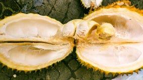 Os durians Imagens de Stock