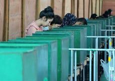 Os eleitores tailandeses moldaram suas cédulas durante o avanço votaram fotografia de stock royalty free