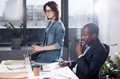 Os empregados profissionais agradáveis estão trabalhando no escritório Imagem de Stock Royalty Free