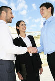 Os empresários agitam as mãos Foto de Stock