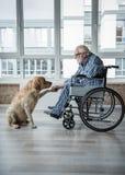 Os enfermos serenos amadurecem o homem que aprecia o tempo com cão Fotografia de Stock