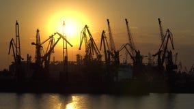 Os esboços dos guindastes no porto contra o sol de ajuste Foto de Stock