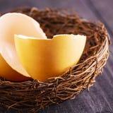 Os escudos de ovo quebrados no ninho no fundo de madeira velho imagem de stock