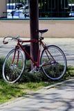 Os esportes bike amarrado a um polo no parque Foto de Stock Royalty Free