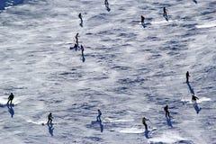 Os esquiadores e os snowboarders que montam em um esqui inclinam-se Fotografia de Stock