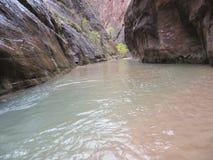 Os estreitos, parque nacional de Zion, Utá Fotos de Stock Royalty Free