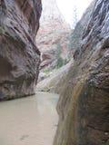 Os estreitos, parque nacional de Zion, Utá Imagens de Stock Royalty Free