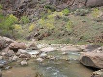 Os estreitos, parque nacional de Zion, Utá Foto de Stock