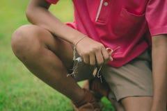 Os estudantes ajudam a retirar o weedsand da tomada-vantagem para manter as folhas secas no campo para despejar o desperdício da  foto de stock royalty free
