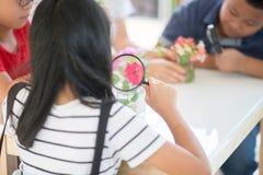 Os estudantes asiáticos e ensinam o scicence da biologia do estudo na sala de aula exterior imagem de stock