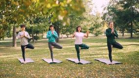 Os estudantes da ioga estão fazendo exercícios de equilíbrio sob a orientação do instrutor profissional durante a classe exterior filme