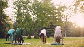 Os estudantes da ioga estão praticando asanas fora durante a classe no parque em corpos e na mente de relaxamento do fim de seman vídeos de arquivo