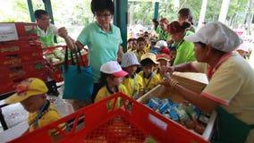 Os estudantes do jardim de infância visitam o jardim zoológico video estoque