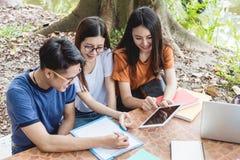 Os estudantes e a amiga do homem são consultam a informação do cálculo foto de stock