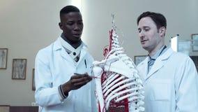 Os estudantes que aprendem a anatomia video estoque