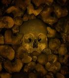 Os et crânes humains, chapelle des os à Evora image libre de droits