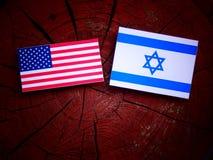 Os EUA embandeiram com bandeira israelita em um coto de árvore isolado Fotografia de Stock Royalty Free