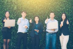 Os executivos gesticulam grande com encontro do conceito incorporado da conexão do dispositivo de Digitas na parede da árvore Foto de Stock