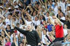 Os fãs de futebol comemoram no estádio Imagem de Stock Royalty Free