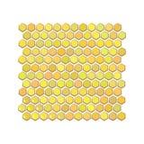 Os favos de mel são favo de mel sextavado ilustração royalty free