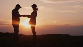 Os fazendeiros equipam e a mulher comunica-se no campo no por do sol Usam uma tabuleta, a seguir agitam as mãos Negócio no negóci foto de stock royalty free