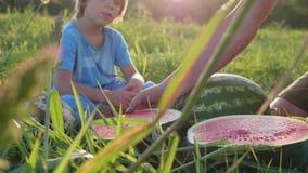 Os fazendeiros genam e filho que come a melancia no campo da exploração agrícola orgânica video estoque