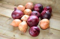 Os fazendeiros introduzem no mercado, cebolas frescas no banco de madeira rústico, Imagens de Stock