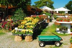 Os fazendeiros introduzem no mercado com flores fotos de stock royalty free