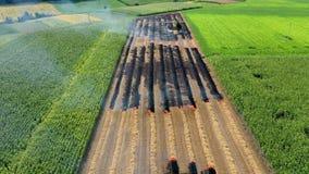 Os fazendeiros queimam inclinações de resíduos da vegetação, da fertilidade de solo assim de degradação e da degradação ambiental video estoque