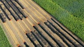 Os fazendeiros queimam inclinações de resíduos da vegetação, da fertilidade de solo assim de degradação e da degradação ambiental filme
