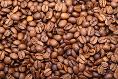 Os feijões de café fecham-se acima Fotos de Stock