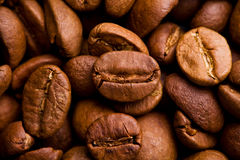 Os feijões de café fecham-se acima Fotografia de Stock Royalty Free