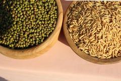Os feijões de Mung e as grões do arroz são cereais doces, ricos na vitamina A, na vitamina B, nos minerais, na fibra dietética e  imagem de stock