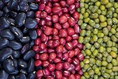 Os feijões vermelhos, feijões verdes, feijões pretos arranjaram em uma fileira vertical. fotografia de stock