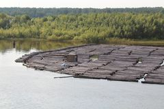 Os feixes em um rio imagem de stock