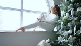 Os feriados, jovem mulher sentam-se na árvore de Natal da soleira e no animal de estimação próximo decorados na atmosfera acolhed video estoque