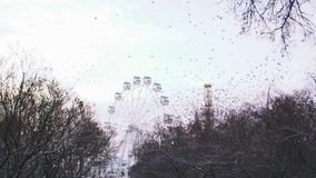 Os ferris imóveis rodam dentro o parque de diversões no fundo cinzento do céu estoque Rebanho bonito dos pássaros que voam longe  filme