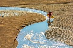 Os fishermans na zona intertidal litoral imagens de stock royalty free